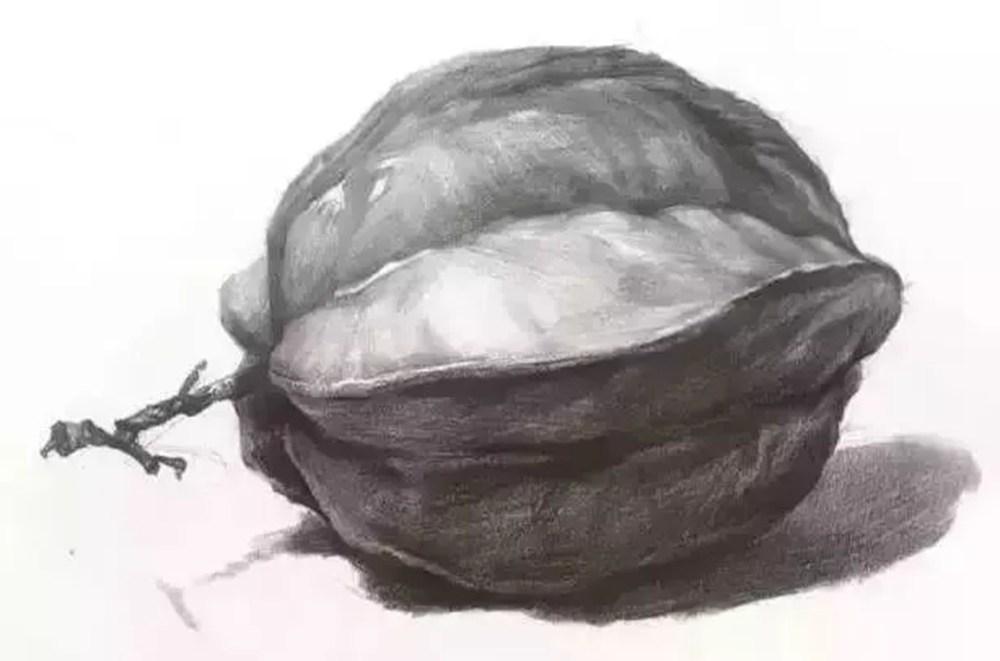 想要联考不害怕,就跟着杭州美术培班老师来吃透这7类素描静物,07