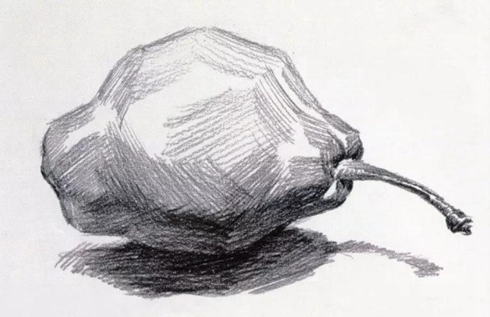 静物素描太难,杭州艺考画室整理的详细教程在里面,07