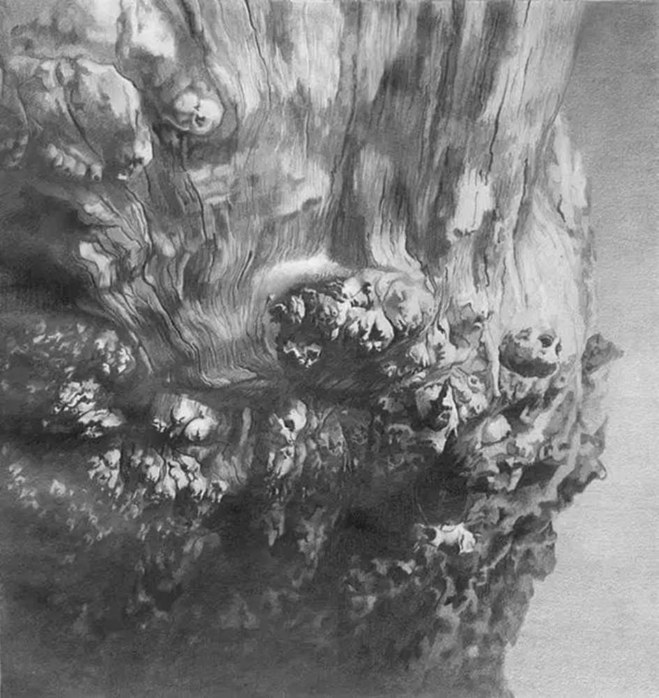 素描这样处理光影,很出彩,杭州艺考画室建议收藏,18