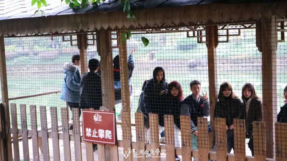 2021统考必胜!横扫千军万马,唯我杭州集训画室白鹿军团,13