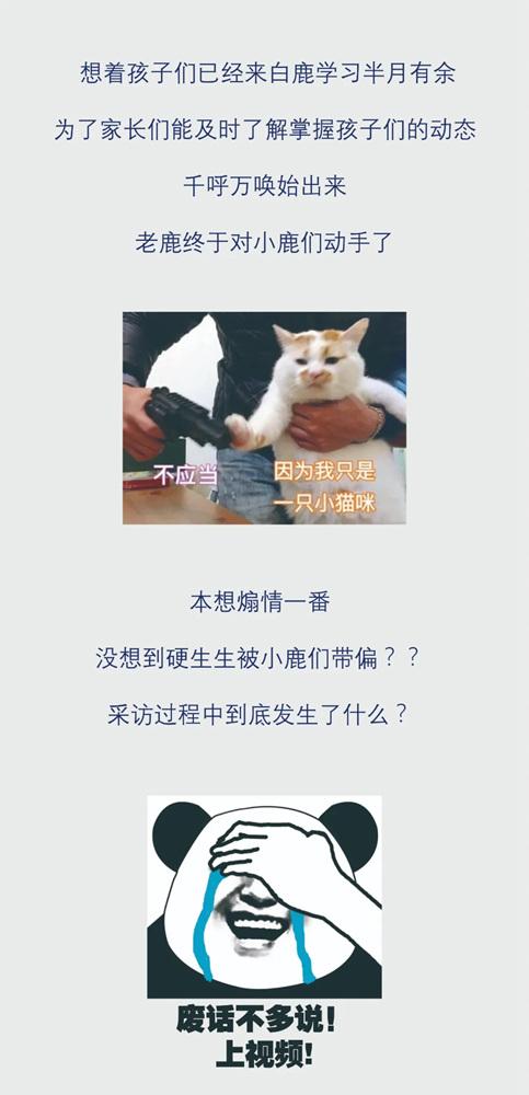 杭州画室,杭州白鹿画室,杭州画室高考培训,01