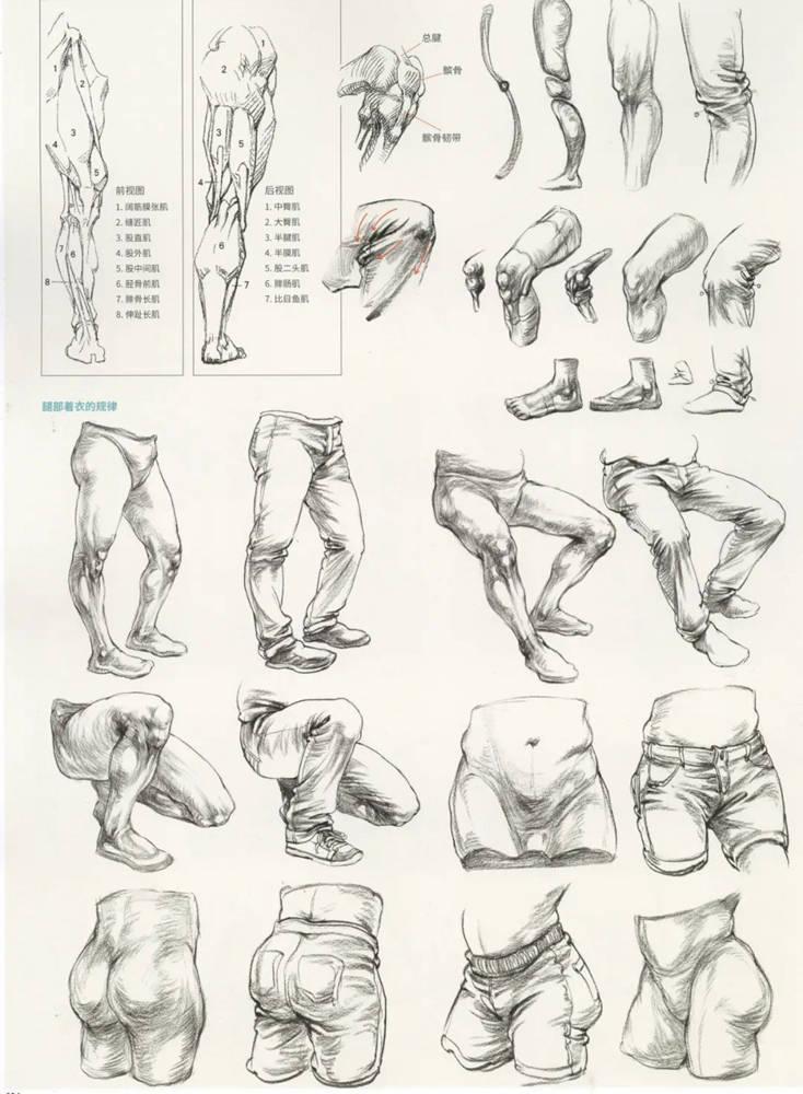 杭州艺考画室超强干货丨速写下肢怎么画?观察是关键,19