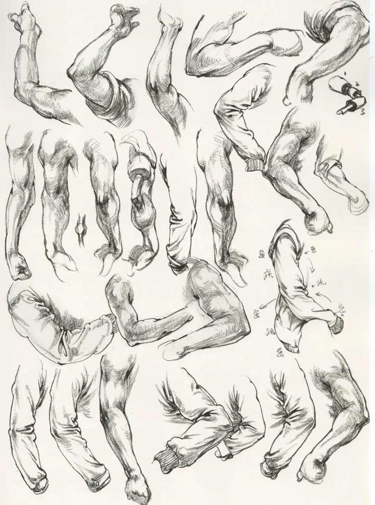 杭州艺考画室超强干货丨速写下肢怎么画?观察是关键,17