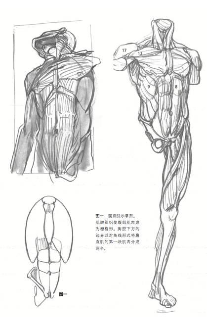 杭州美术培训画室,杭州素描培训,杭州画室,20