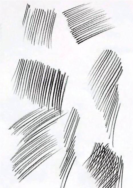 素描排线你了解多少?杭州艺考画室老师给大家从零来时科普,09