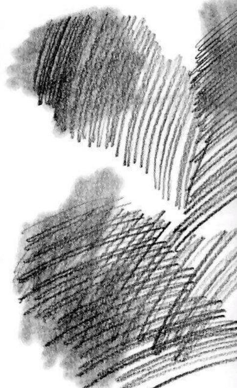 素描排线你了解多少?杭州艺考画室老师给大家从零来时科普,06