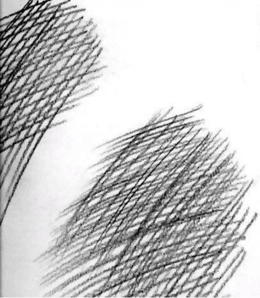 素描排线你了解多少?杭州艺考画室老师给大家从零来时科普,05