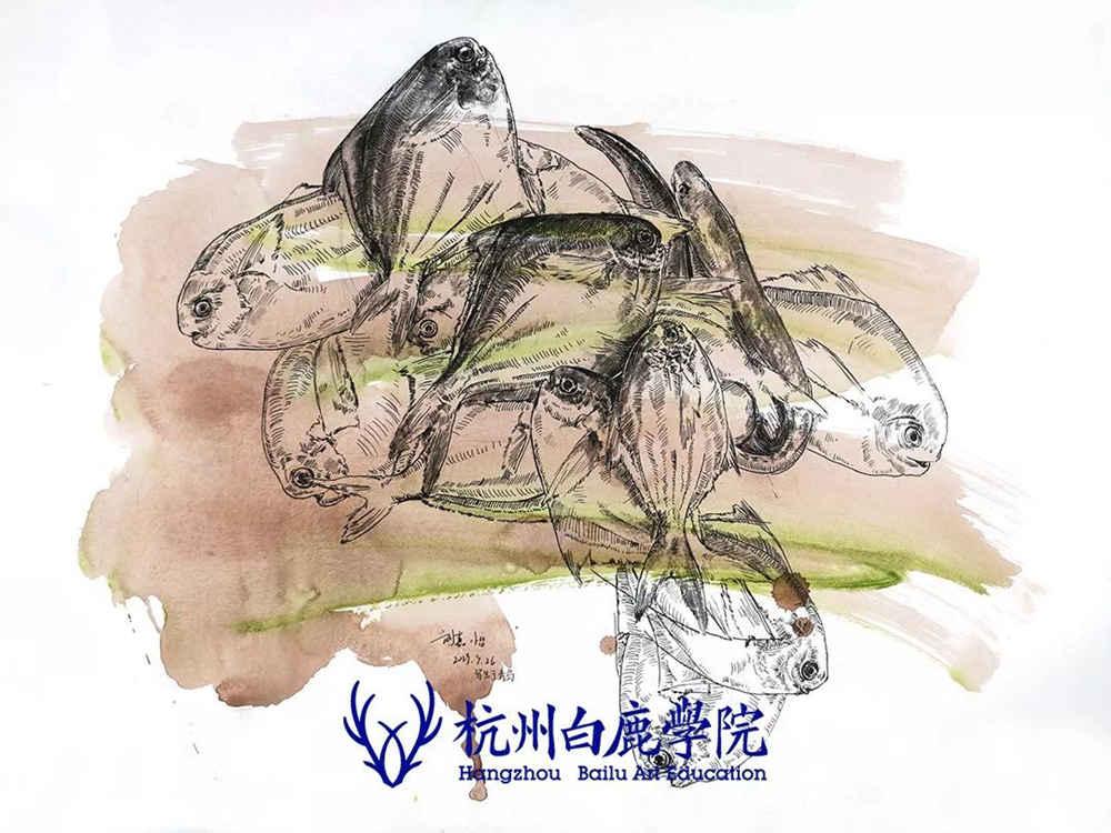 杭州艺考画室写生季 | 杭州白鹿学院下乡写生通知及注意事项,72