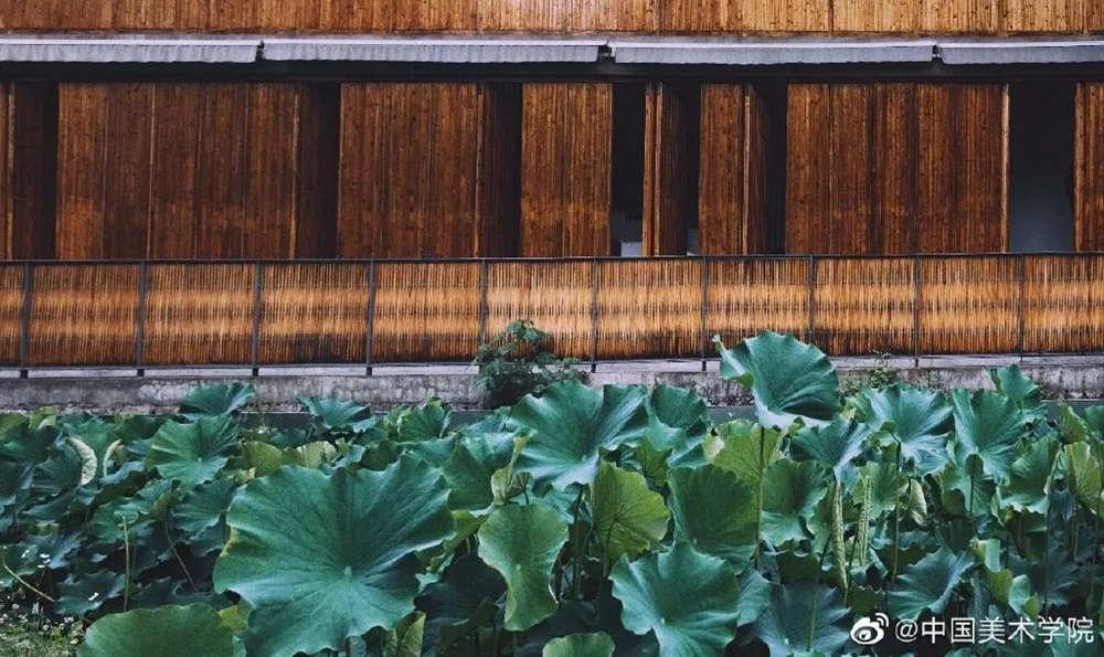 杭州艺考画室快讯 | 抓住最后录取机会!全国多省市公布征集志愿时间与安排,05