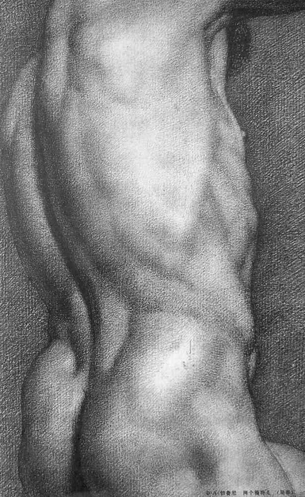 杭州艺考画室给你造型生动,百看不厌的62幅人体素描,23