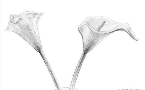 想知道为何O基础也可以画出的玻璃质感?杭州艺考画室老师教你,10