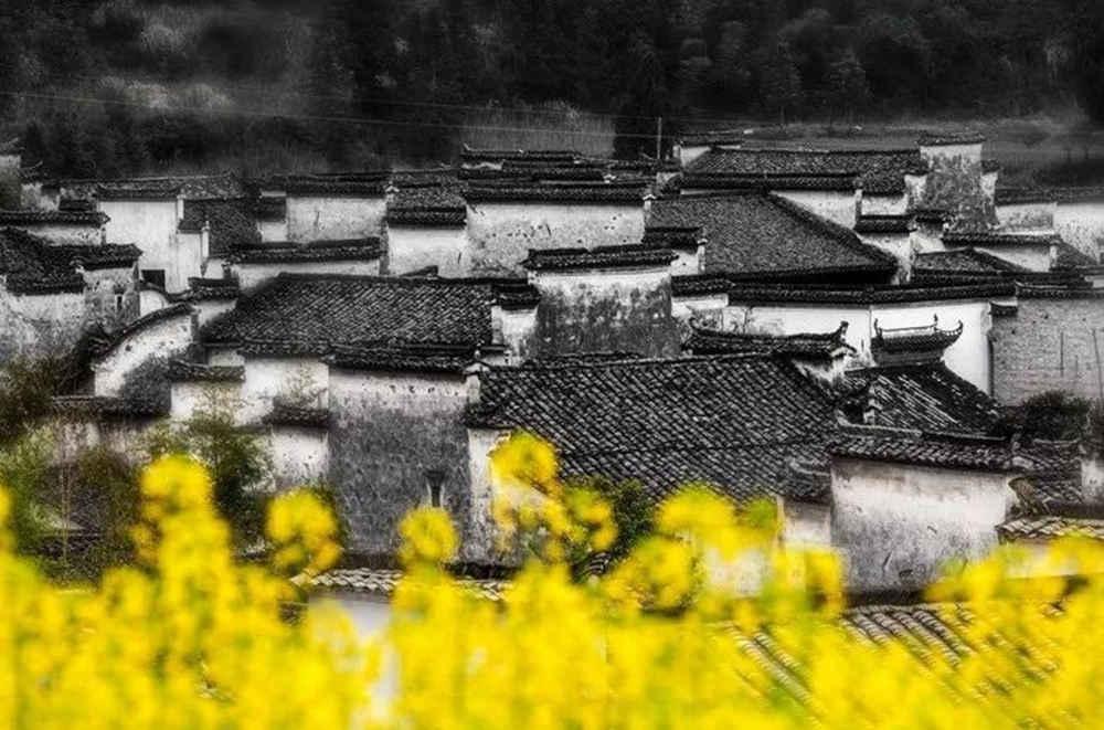 杭州艺考画室写生季 | 杭州白鹿学院下乡写生通知及注意事项,09