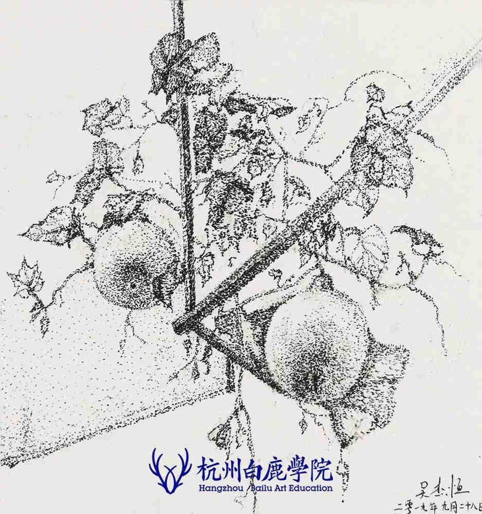 杭州艺考画室写生季 | 杭州白鹿学院下乡写生通知及注意事项,76
