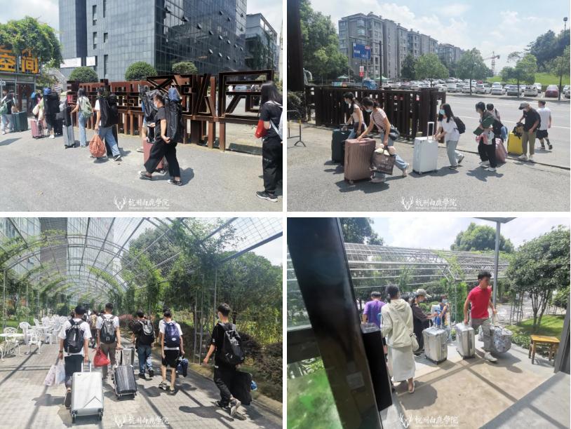 小鹿们请注意,列车前方到站杭州白鹿画室,14