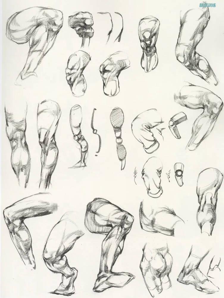 杭州艺考画室超强干货丨速写下肢怎么画?观察是关键,18