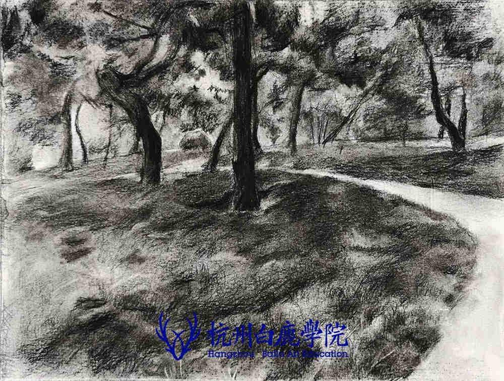 杭州艺考画室写生季 | 杭州白鹿学院下乡写生通知及注意事项,73