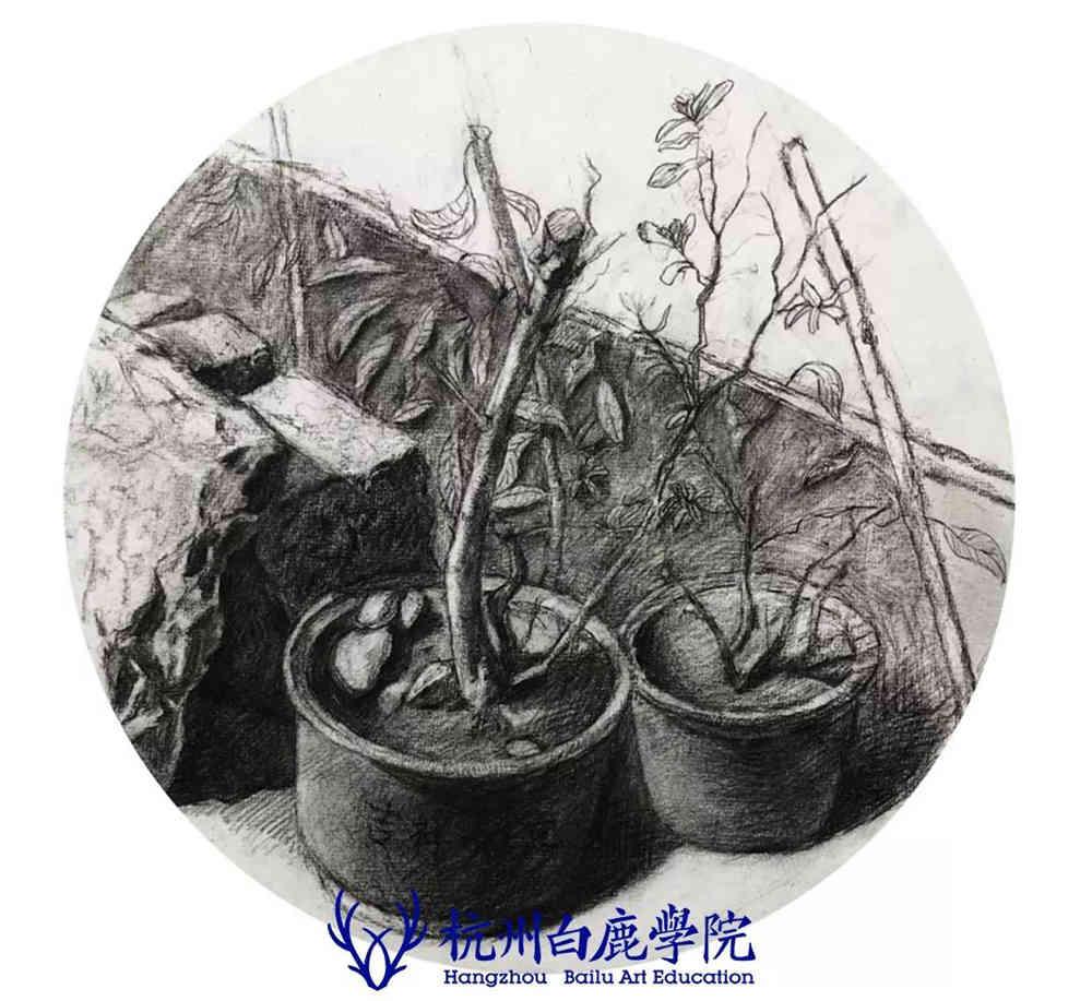 杭州艺考画室写生季 | 杭州白鹿学院下乡写生通知及注意事项,91