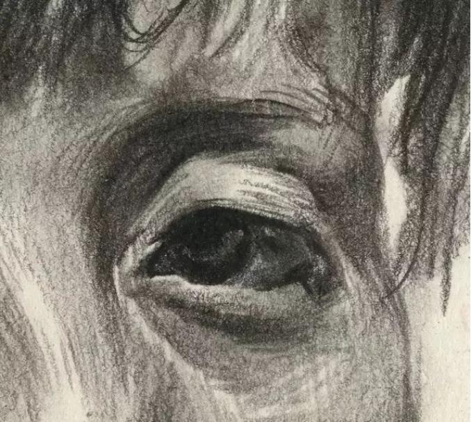 杭州艺考画室素描教学|教你画正面微侧的长发女中年肖像,09