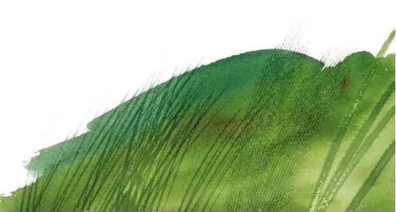 杭州艺考画室,杭州画室,杭州色彩美术培训画室,29